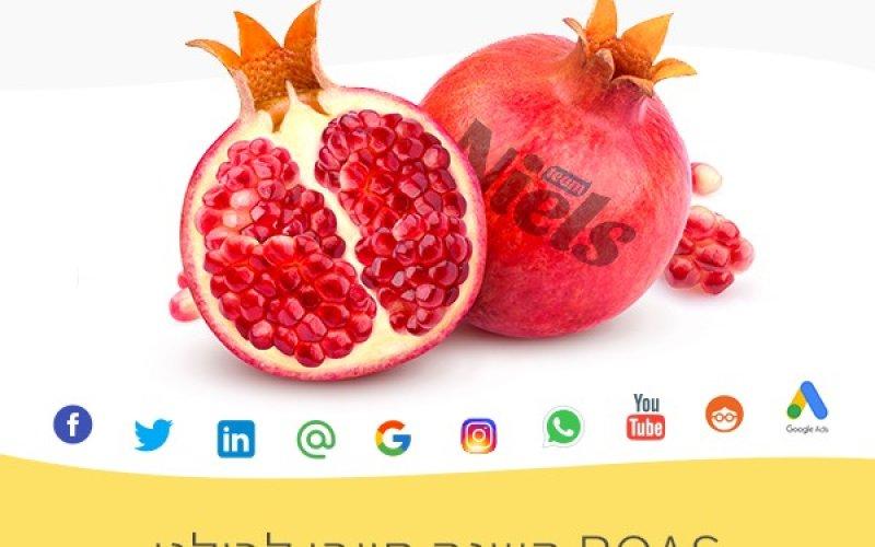 מהו חישוב ROAS  לפרסום דיגיטלי?